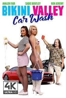 Bikini Valley Car Wash постер фильма