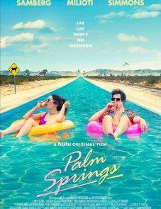 Палм-Спрингс постер фильма