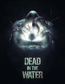 Смерть на воде постер фильма